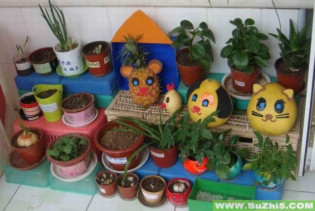 简笔画 幼儿园环境布置图片 幼儿园自然角布置 >> 正文内容; 幼儿园