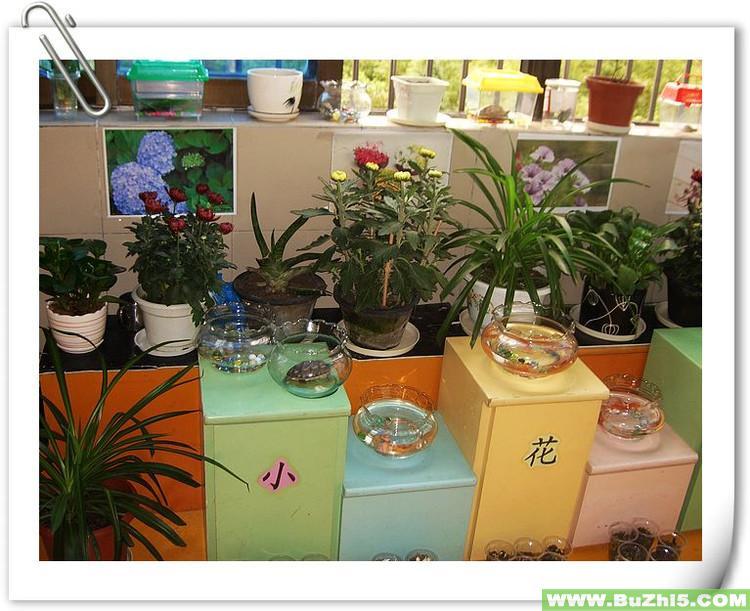 幼儿园室内环境 教室一角图片