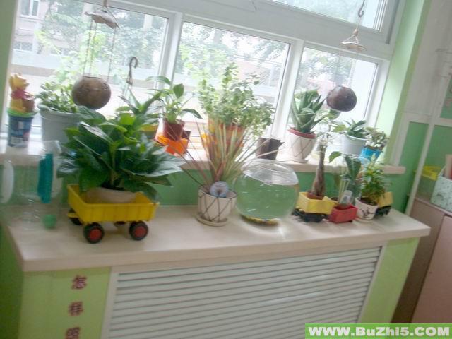 幼儿园植物角布置图片大全(第13页);; 幼儿园活动区布置幼儿园活动区