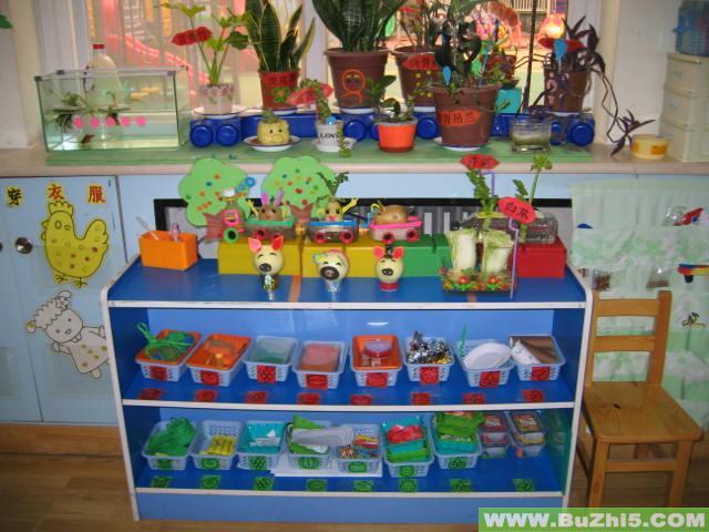 幼儿园植物角布置图片大全(第9页)