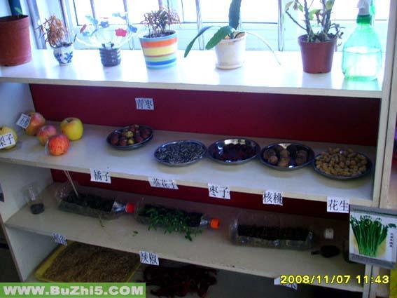 零食区布置植物区布置