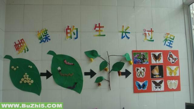 幼儿园墙面布置  蝴蝶的生长过程中班墙面设计图片下载说明:在图片上