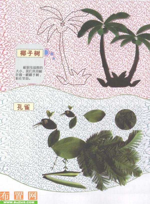 秋季创意布置:椰子和孔雀